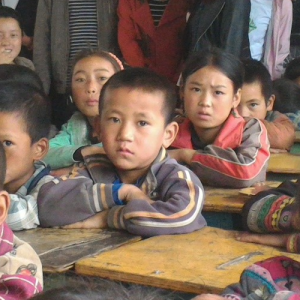BLOSSOM AND BEAR FRUIT – Students of Zhaojue Girls' Class in 2001 Became Today's Village Teachers